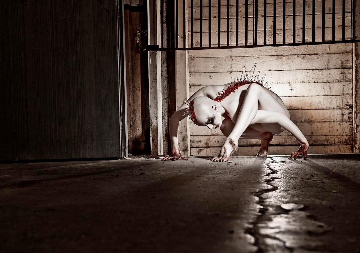 Anathema Photography - Insidious Biomorph