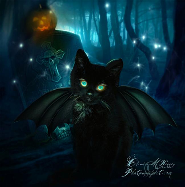 halloween-black-cats - Phatpuppy Art