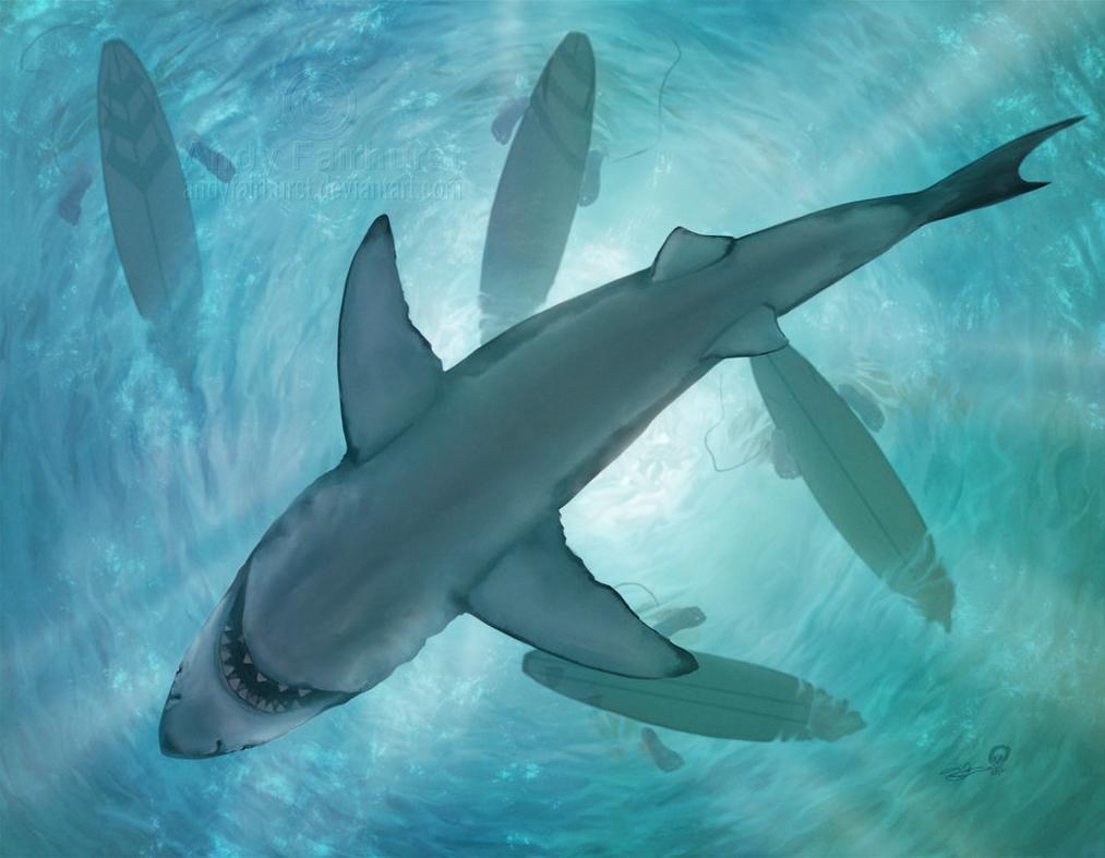 Shark - Andy Fairhurst