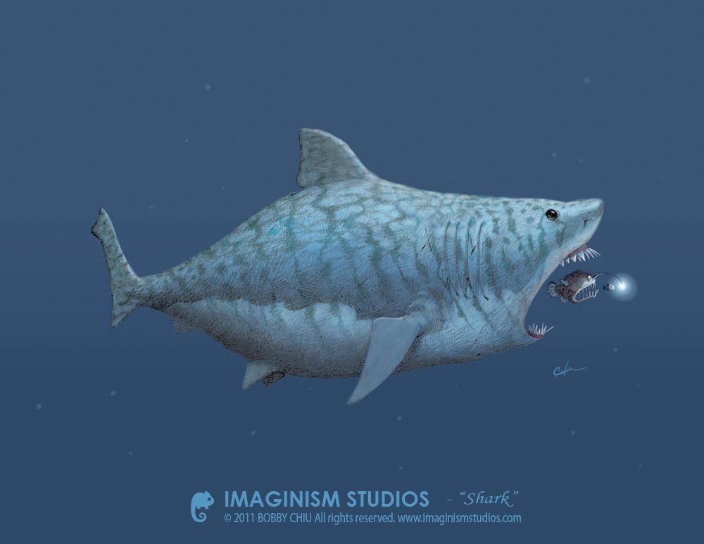 Shark - Bobby Chiu