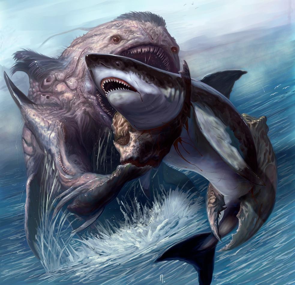Shark - Davesrightmind