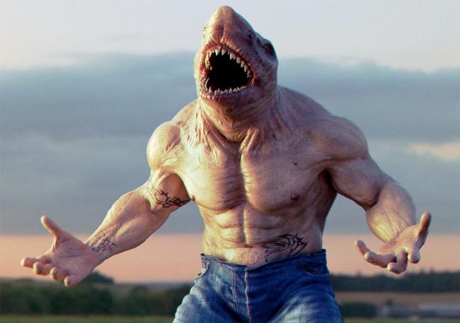 Shark - Luca Maccarelli