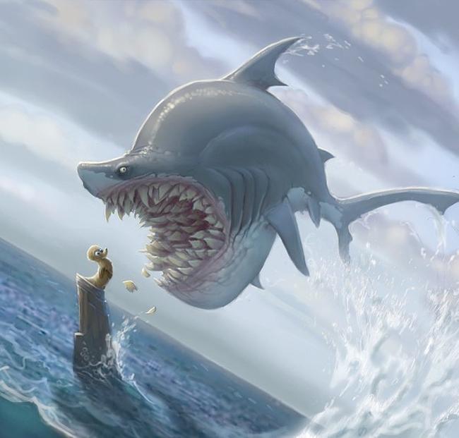Shark - Sam Nielson