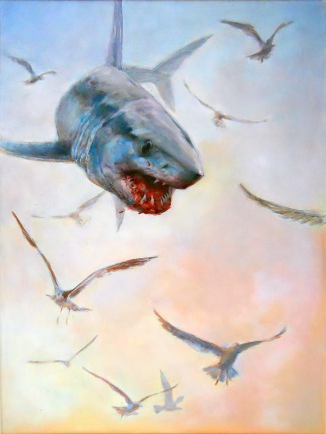 Shark - Tom D'Auria