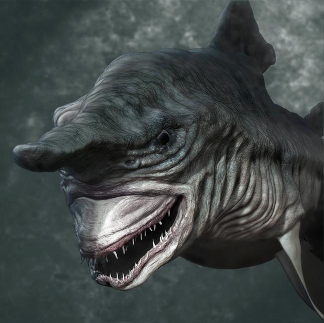 Shark - Vojislav Vukadin