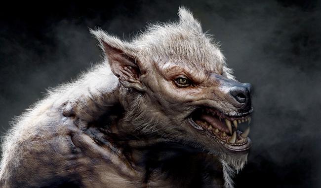 Wolfman - Mathieu Aerni