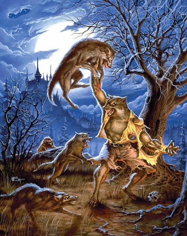 Wolfman - Patrick McEvoy