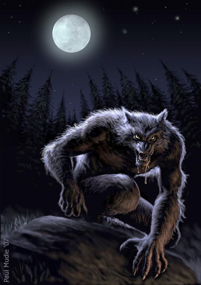 Wolfman - Paul Alexander Mudie