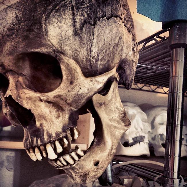 Skull Shoppe